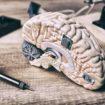 Künstliche Intelligenz - Gehirn - Lernen